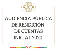Rendición Pública de Cuentas 2020